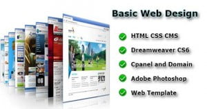 Basic-Web-Design-webson-job