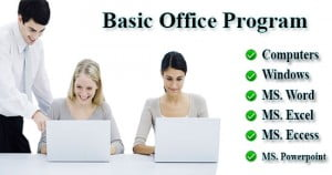 webson-job-basic-office-program