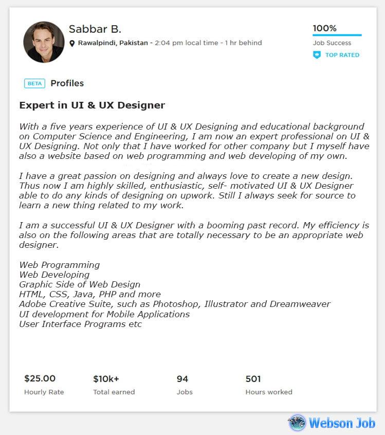 Upwork Profile Overview Sample for UI & UX Designer