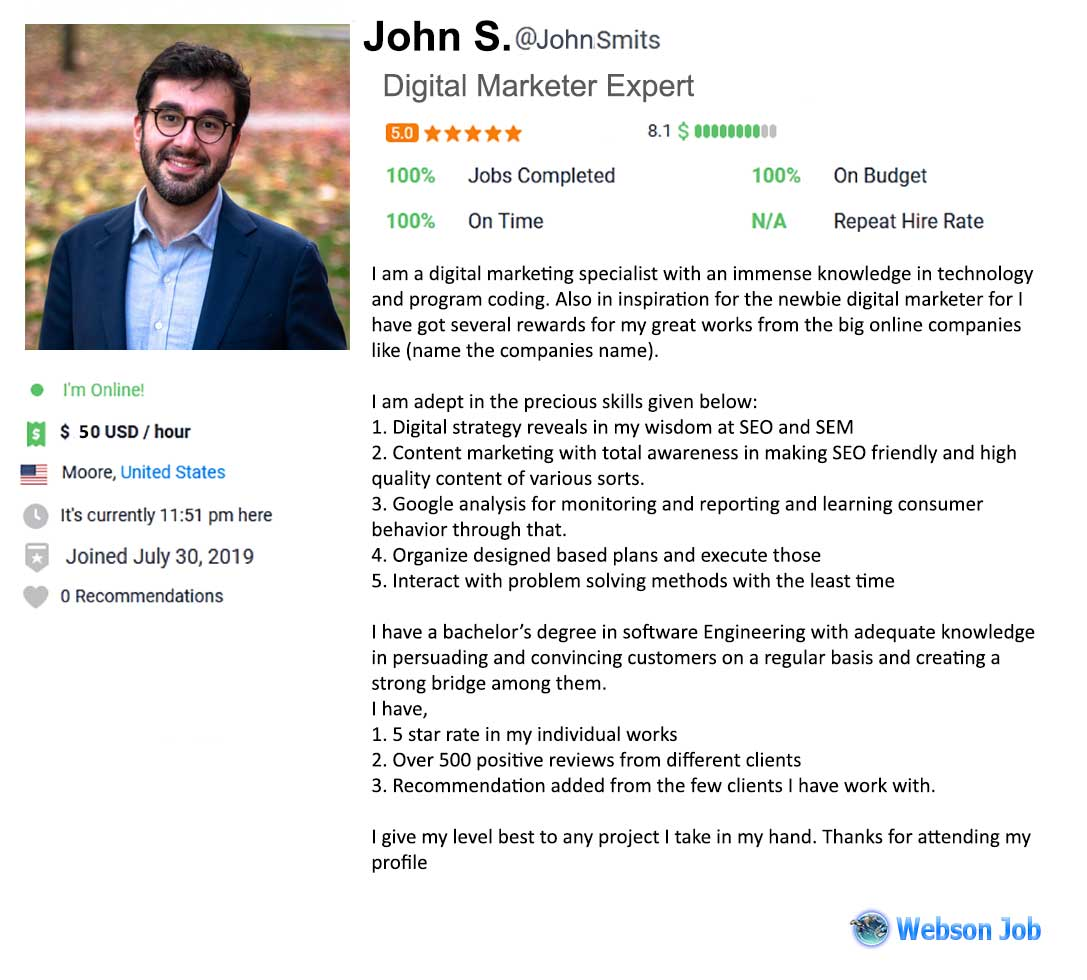 Digital Marketer Profile Summary