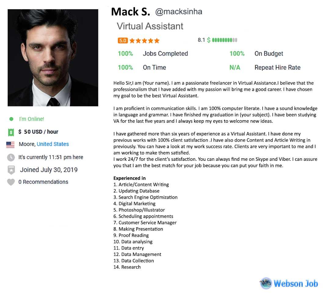 Virtual Assistant Profile Summary Sample