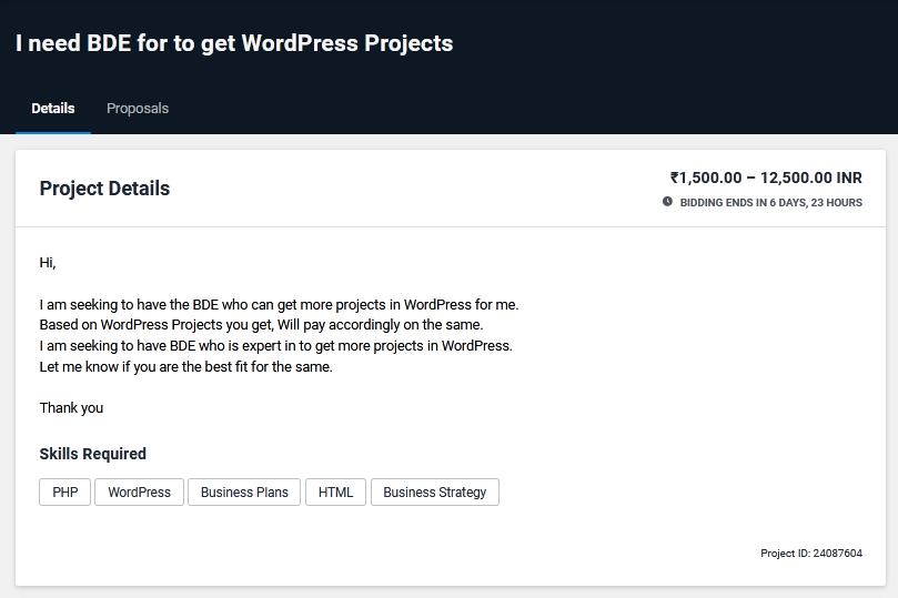 Wordpress Developer Proposal Sample