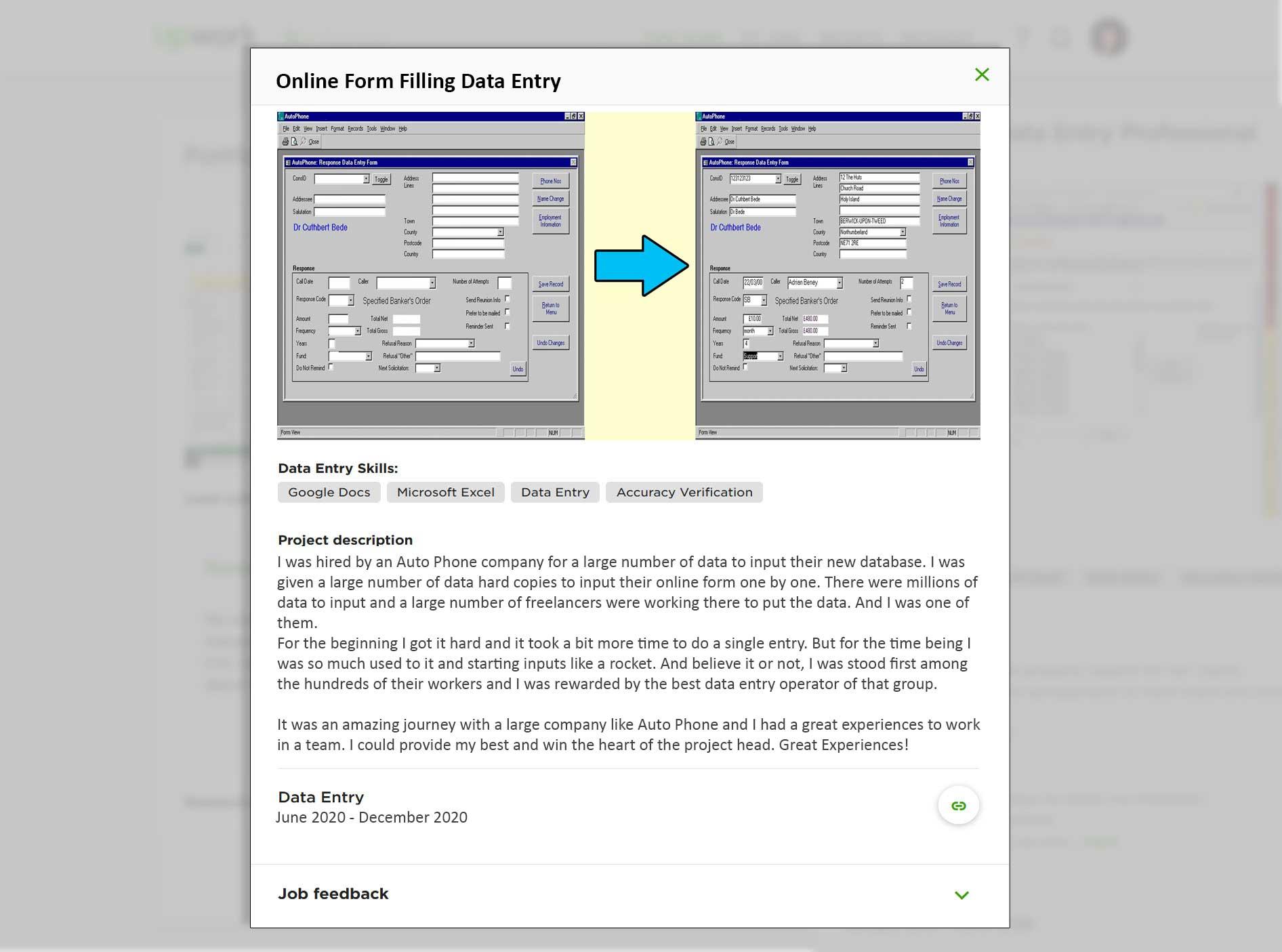 Data Entry Portfolio Sample (Online Form Filling Input)